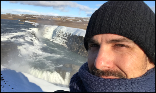 Iceland_Bear